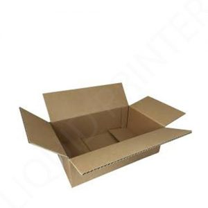Regular Slotted Containers (2)