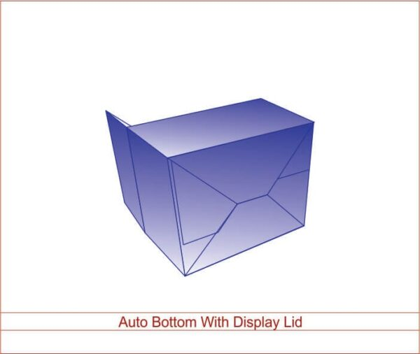 Auto Bottom With Display lid 03
